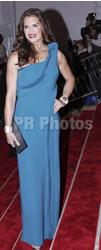 Brooke Shields on Grayish Blue