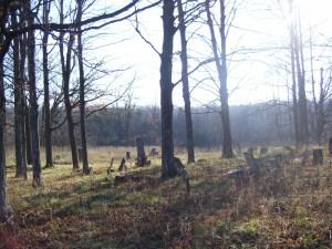 greenbush-cemetery-by-b-2