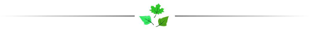 Leaf_Para_Divider