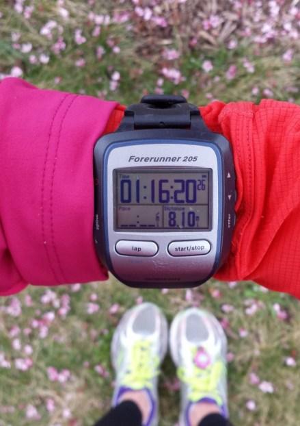 8 Mile Long Run // lynnepetre.com