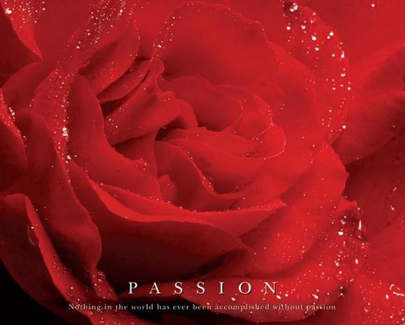 o_passion_mpp03821