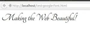 google-font-localhost