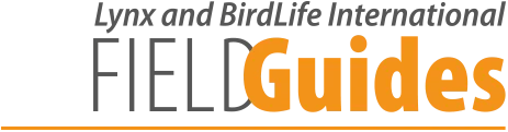 Lynx and BirdLife International Field Guides Collection logo