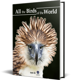 All the Birds of the Word | For the first time ever, you can contemplate All the Birds of the World together in a single easy-to-use, fully-illustrated volume.