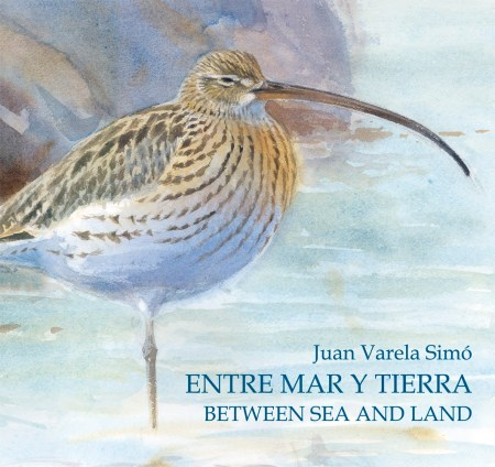 Entre Mar y Tierra / Between Sea and Land book cover image