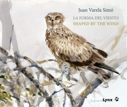 La forma del viento / Shaped by the wind book cover image