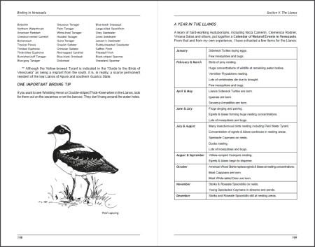 Birding in Venezuela sample page