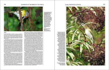 Handbook of the Birds of the World - Volume 15 sample page