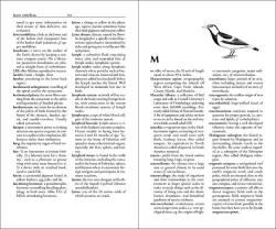 The Ornithologist's Dictionary sample page