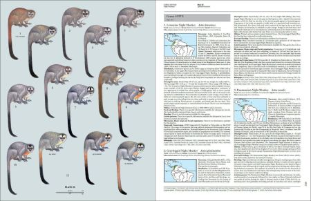 Handbook of the Mammals of the World - Volume 3 sample page