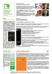 2ème Newsletter Lyon 7 / Lyon 8 Juillet 2014