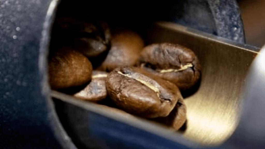 café bio torréfié en ville