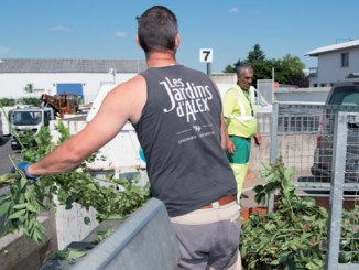 La Métropole de Lyon reprend ses collecte de déchets verts