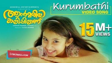 Photo of Kurumbathi Chundari Nee Song Lyrics | Ann Mariya Kalippilanu Malayalam Movie Songs Lyrics