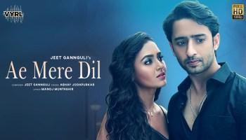 Ae Mere Dil Lyrics - Abhay Jodhpurkar | Shaheer Sheikh, Tejasswi Prakash