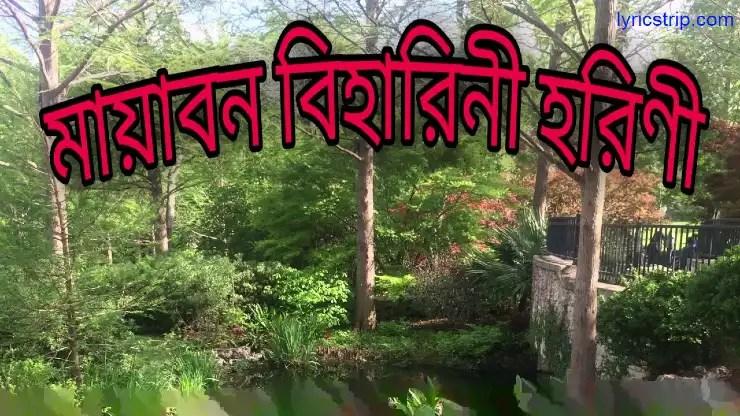 mayabono biharini horini Lyrics