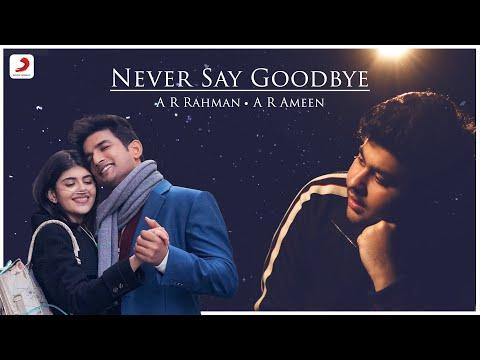 Never Say Goodbye Lyrics - A. R. Ameen