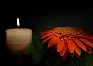 luto-morte-vida-luz- lysis-psicologia