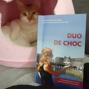 Retour de lecture de Livrement Ka du roman Duo de Choc