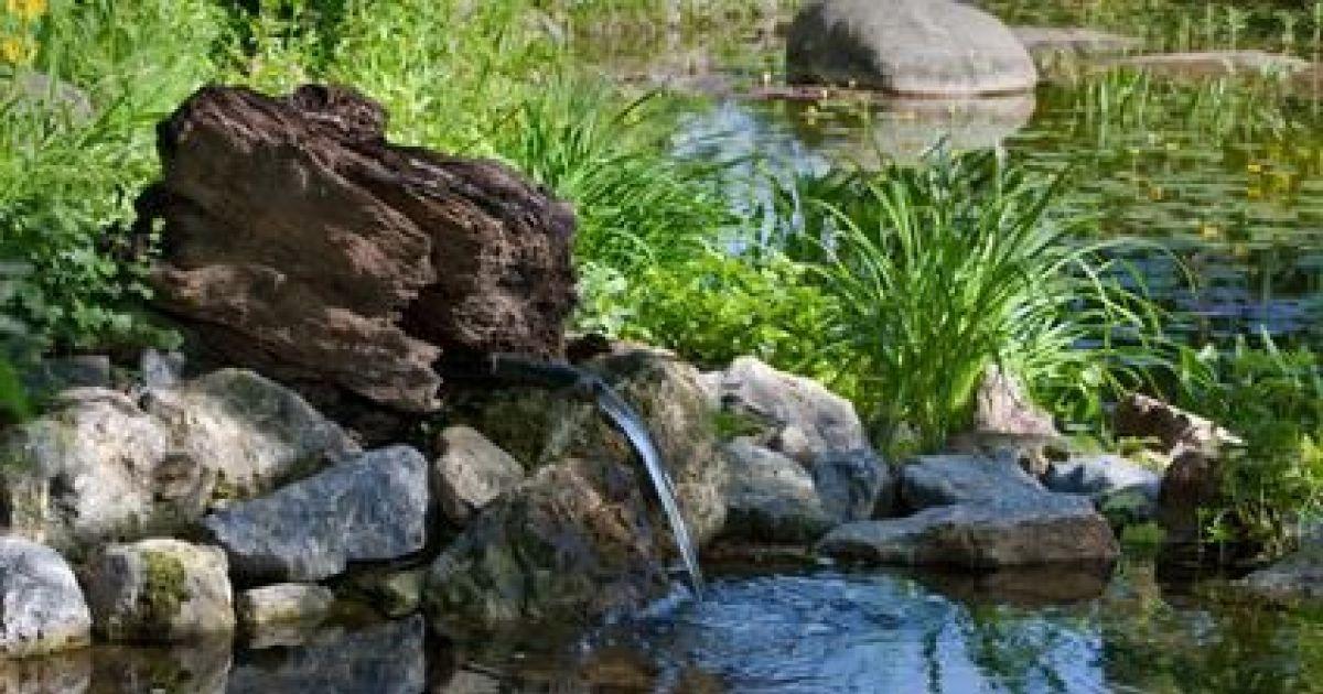 Crer Un Jardin De Rocaille Conseils Et Astuces