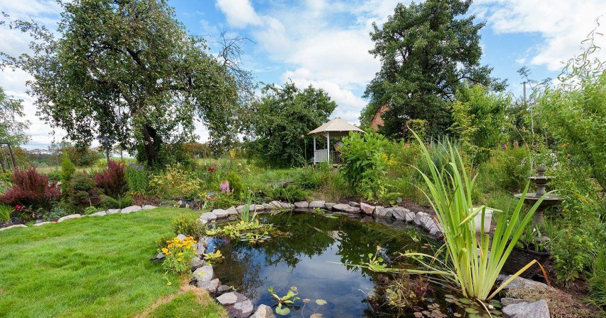 les differentes formes de bassins de jardin