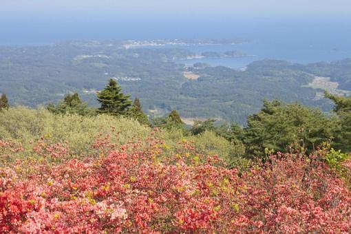 Mt. Tatsugane