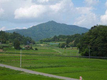 緑色の里山風景