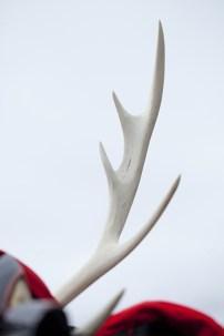 03鹿子躍