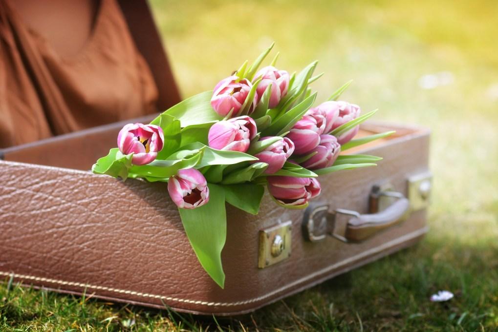Die 5 besten Tipps für den Start in einen gesunden Frühling