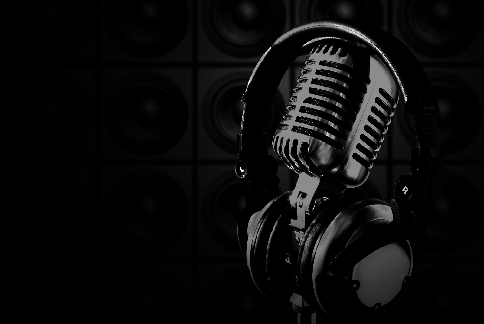 microphone-slide2