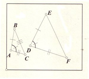 Euclid and His Twentieth Century Rivals: Diagrams in the