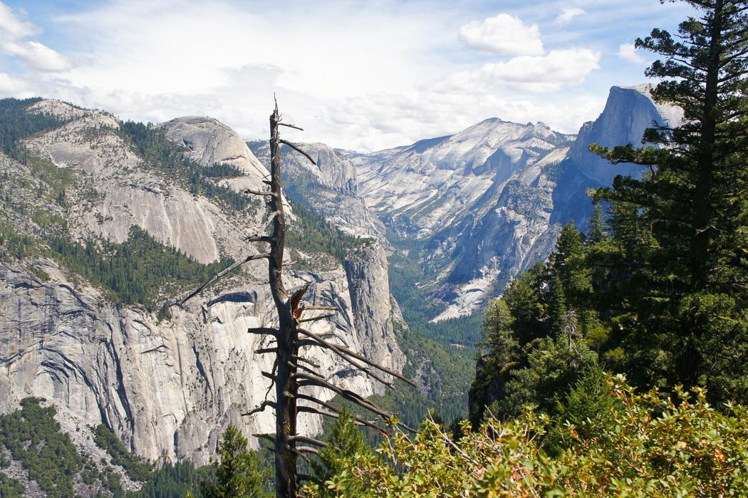 yosemite parc californie