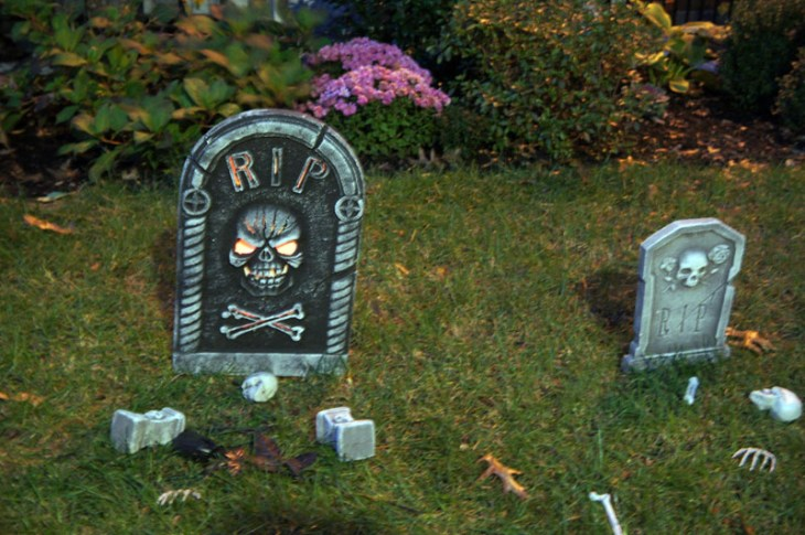 Rip bis - Halloween in Boston