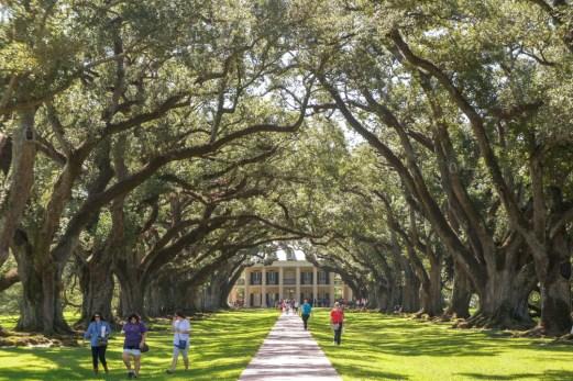 Oak Alley plantation - Nouvelle Orléans