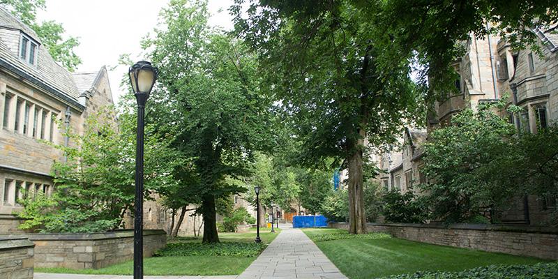Yale University New Haven 4