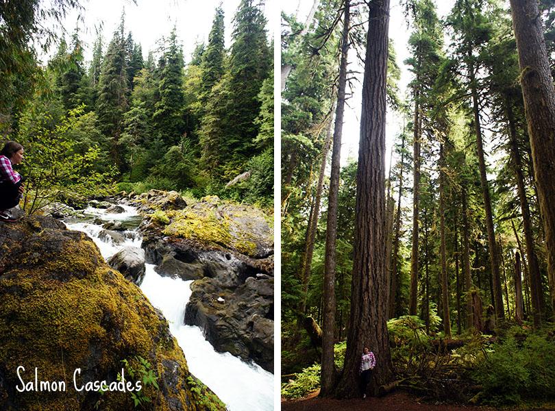 Sol Duc valley - Salmon Cascades