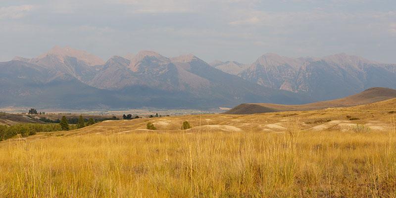 Bison Range Montana 2