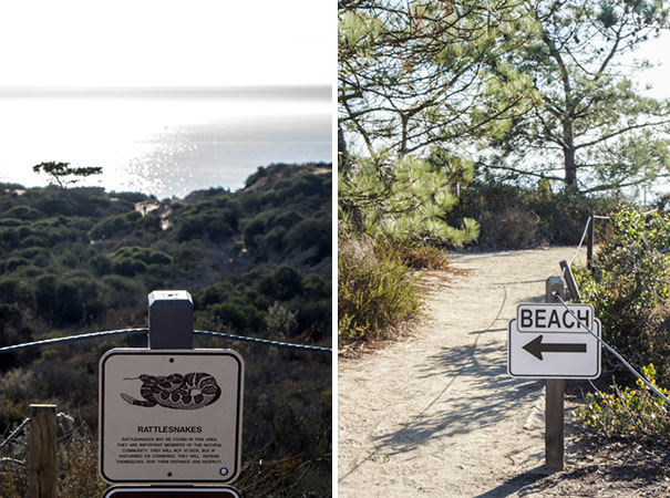 Torrey Pines State Reserve - San Diego, Del Mar, Californie