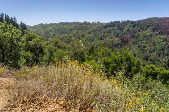 Big sur Californie Route 1 road trip randonnée Big Sur Valley