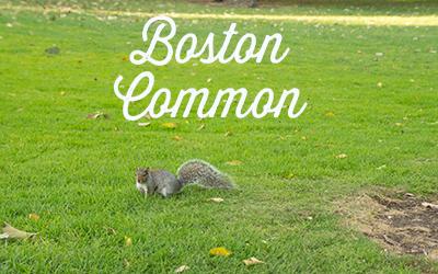 Visite guidée Boston common