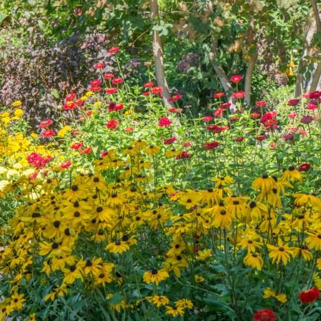 Botanical Garden - Denver Colorado-28
