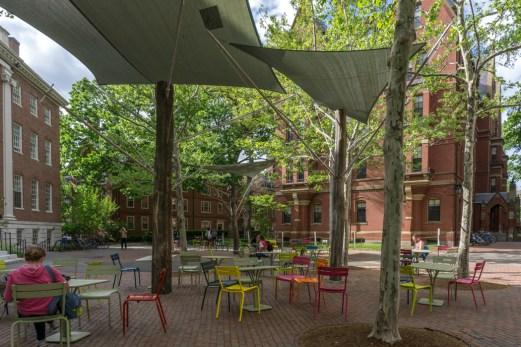 Chaises colorées - Harvard University Cambridge-8