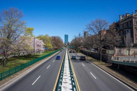 Printemps Boston floraison-2
