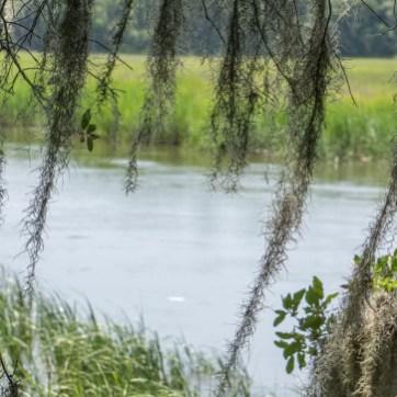 Le parc historique de Wormsloe Savannah Georgie-4