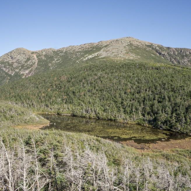 White mountains Mount Lafayette-20