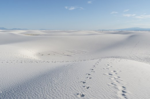 White sands dune nouveau mexique-12