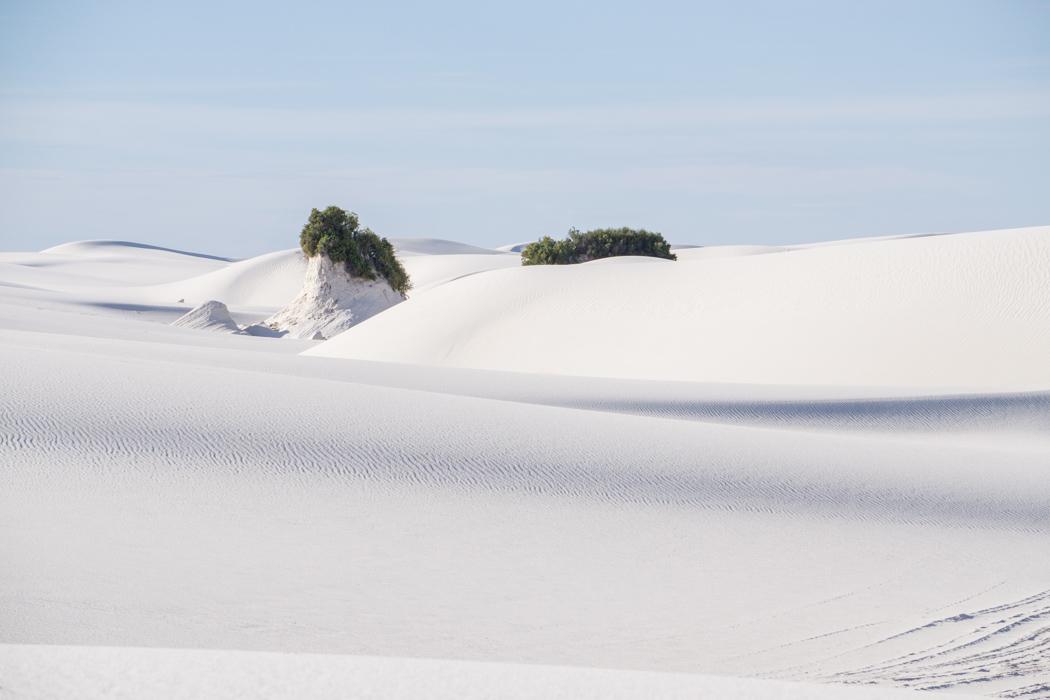 White sands dune nouveau mexique-18