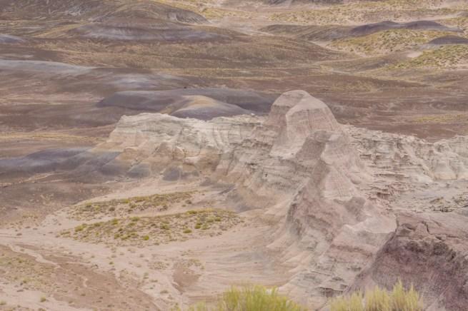 foret petrifiee arizona-20