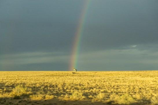 arc en ciel Bisti Badlands Nouveau Mexique-3