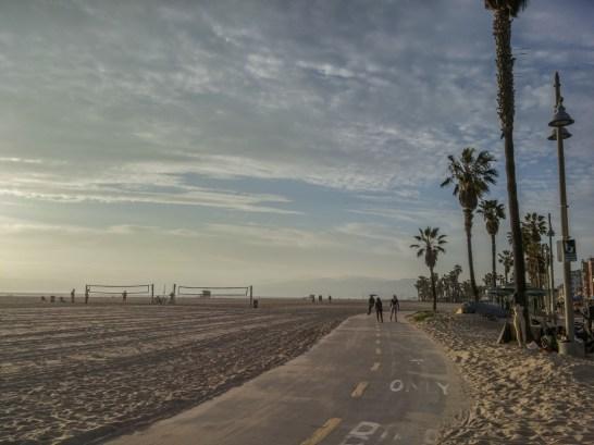 piste cyclable et palmiers Venice Beach Los Angeles California-8